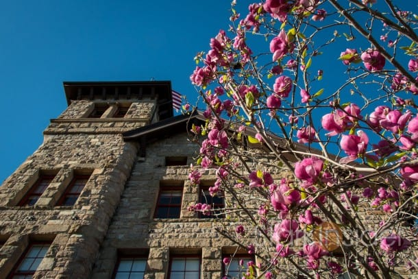 Culinary Institute of America at Greystone