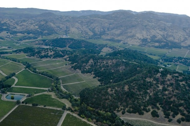Birds eye view of the Stags Leap District AVA in Napa Valley.