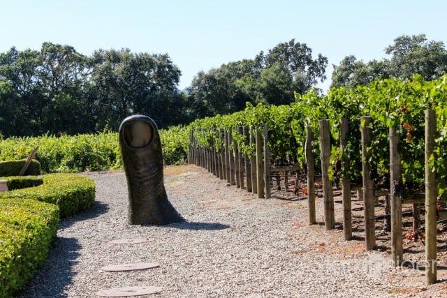 California wine sales continue to grow, up 6.7% y/y in 2014