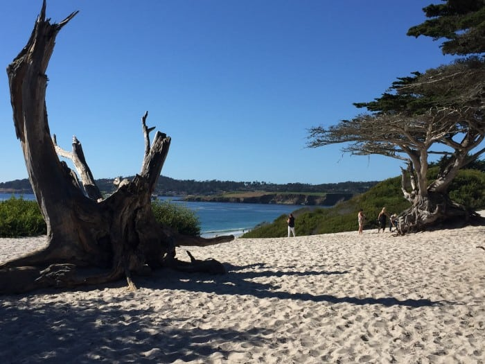 Carmel, California - Beach photo