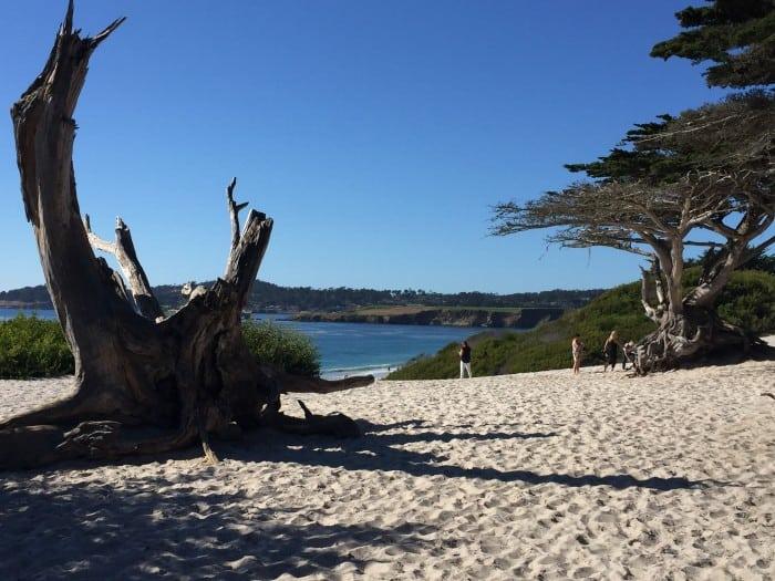 Carmel, California - Beach photo