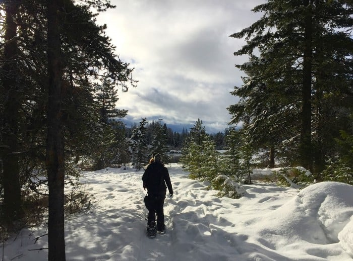 Snowshoeing through Glacier National Park