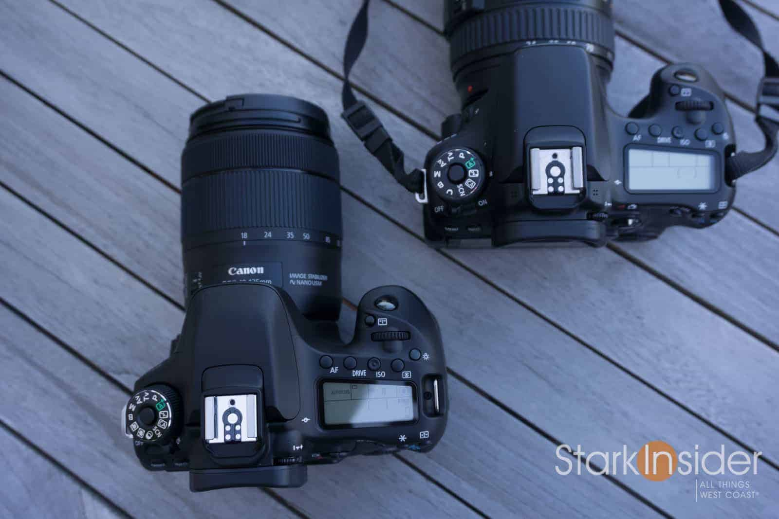 Top 5 Best DSLR and Mirrorless Cameras for Shooting Video Stark