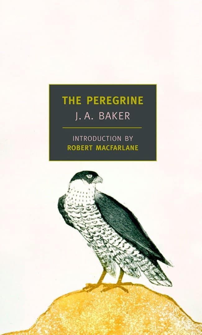 The Peregrine Novel - Werner Herzog filmmaking literature