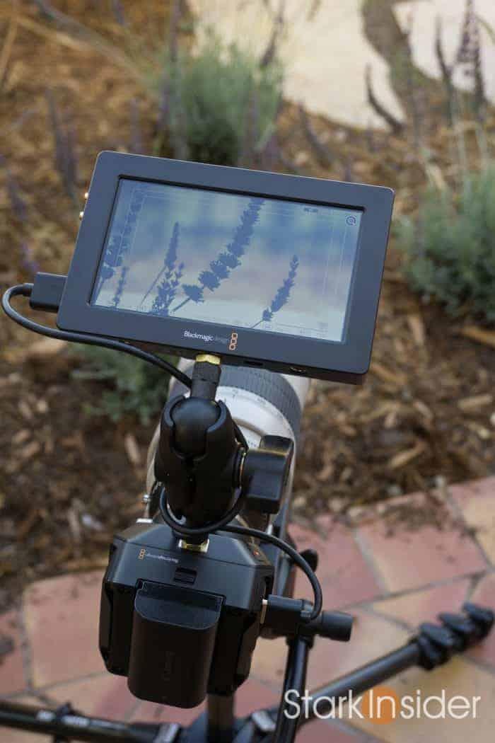 blackmagic-micro-cinema-camera-canon-c100-01046