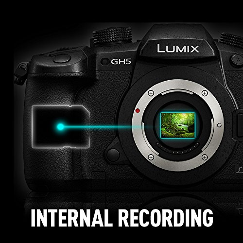 Panasonic Lumix GH5 internal 10-bit 4:2:2 recording