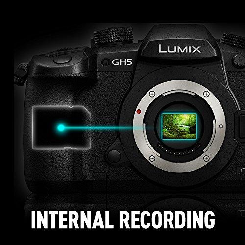 Panasonic Lumix GH5 internal 10-bit 4:2:2 recording