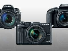 Canon EOS 77D vs. Rebel T7i vs. M6 Mirrorless comparison