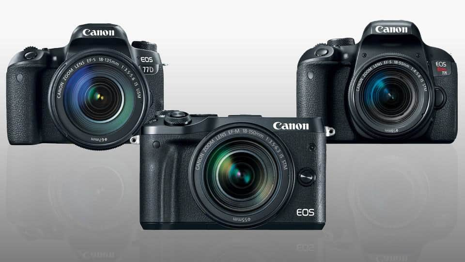 Which New Canon Camera to Buy: Canon EOS 77D, Rebel T7i or M6