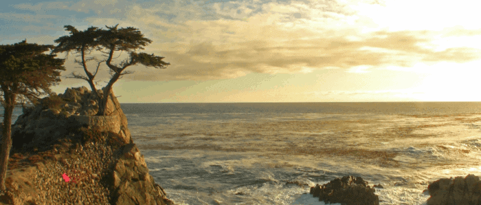 Pebble Beach Food and Wine Video Interview