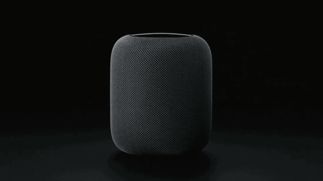 Apple HomePod delayed to 2018 - A huge miss, cedes market share to Amazon and Google.