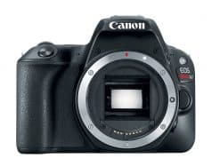 Canon EOS Rebel SL2 Digital SLR Camera Body