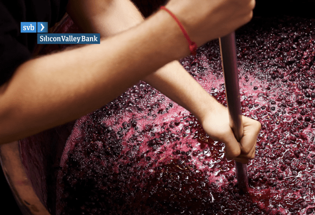 SVB Silicon Valley Bank: 2018 State of the Wine Industry by Rob McMillan
