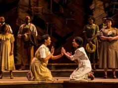 The Color Purple - SHN Orpheum Theatre review by Ilana Walder-Biesanz