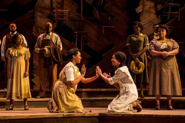The Color Purple - SHN Orpheum Theatre review by Ilana Walder-Biesanz