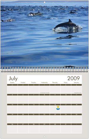 2009 Loreto Calendar July