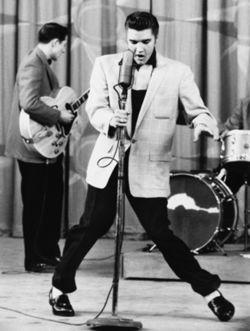 Elvis Presley The Hound Dog!