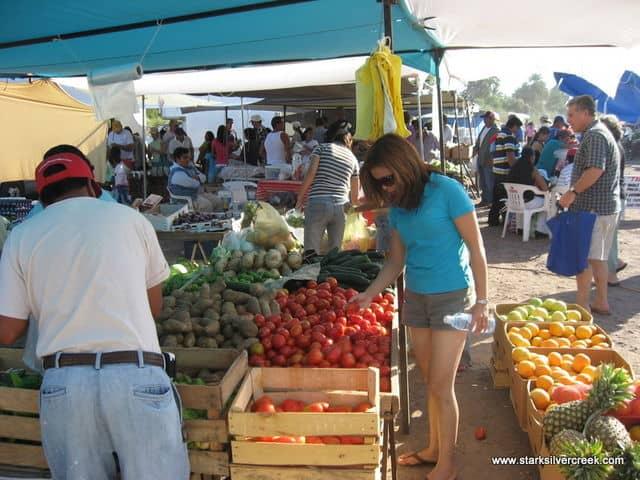 Loreto-BCS-Farmers-Market-9