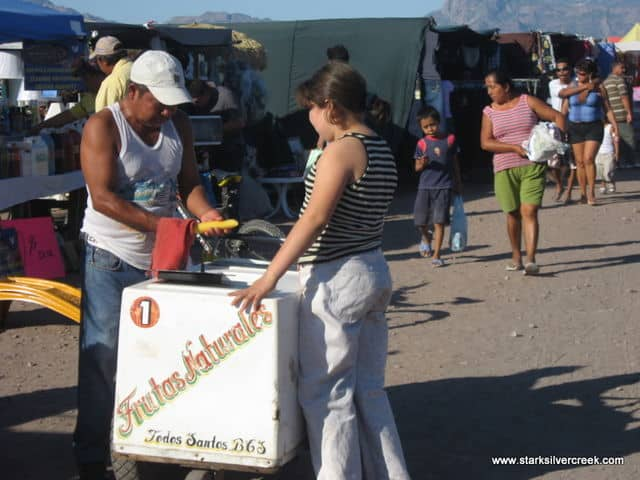 Loreto-BCS-Farmers-Market-5