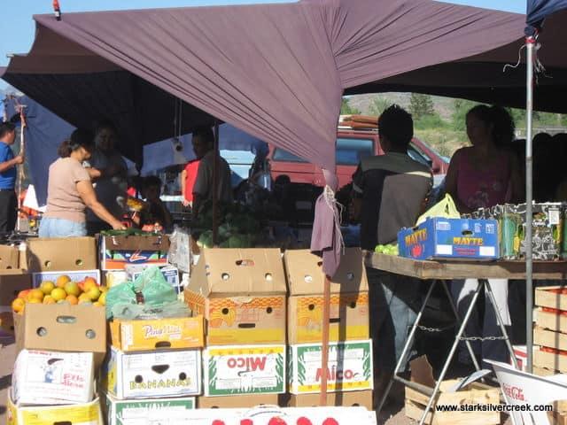 Loreto-BCS-Farmers-Market-7