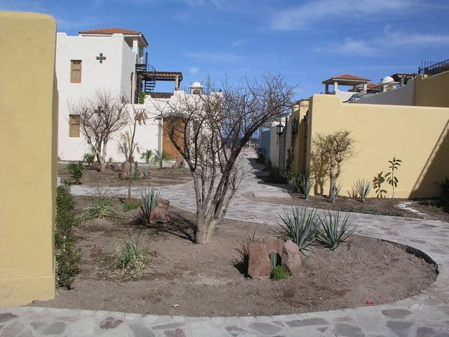 Loreto Bay Landscaping 01